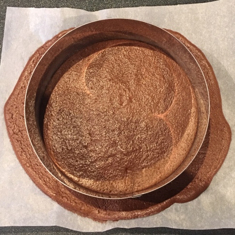 Magalie patisse fluffy choco base entremet 12